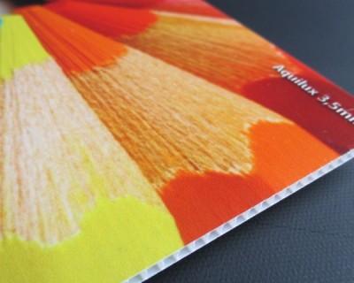 Alvéolaire 3.5 mm